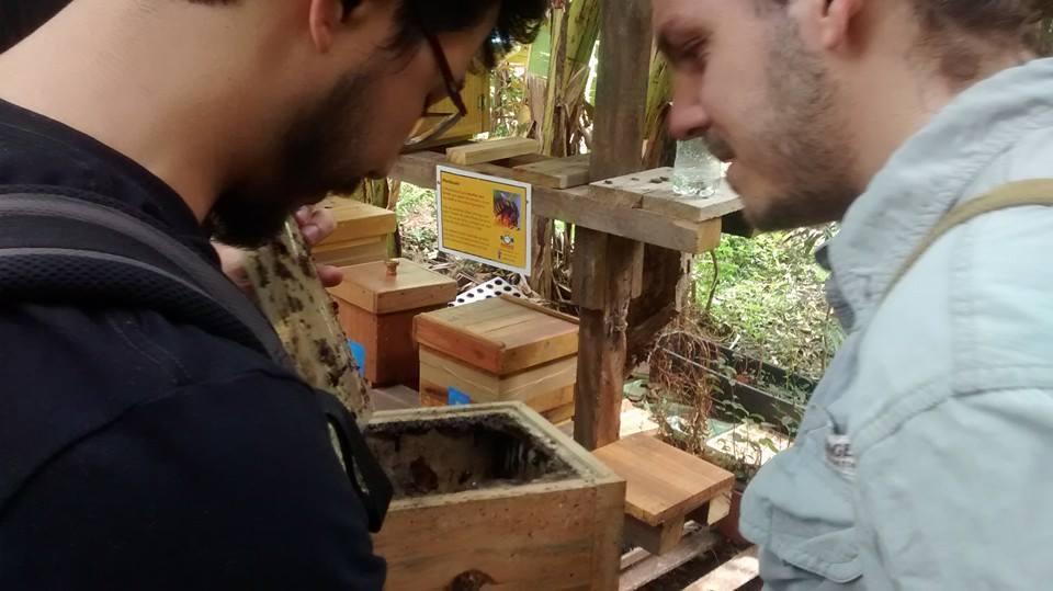 Palestra No Meliponário Didático Da Horta Das Corujas SP