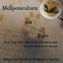 Melipofoco