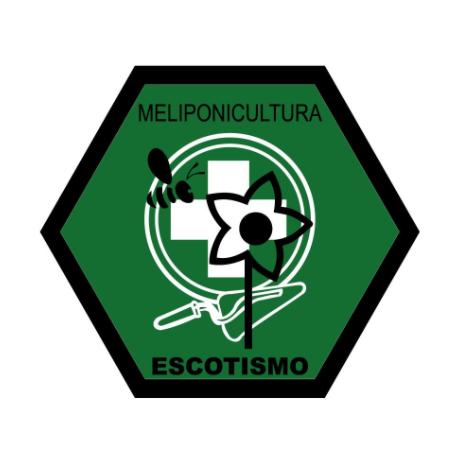 Meliponicultura Se Torna Especialidade Escoteira.